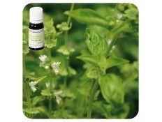 Aceite esencial Albahaca Exótica NAT Pranarom