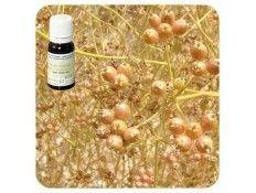 Aceite esencial Cilantro NAT Pranarom