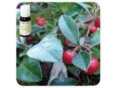 Aceite esencial Gaulteria NAT Pranarom