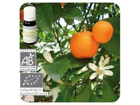 Aceite esencial Mandarina BIO Pranarom