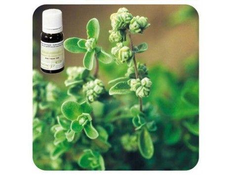 Aceite esencial Mejorana NAT Pranarom