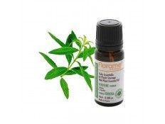 Aceite Esencial Verbena Yunnan BIO Florame