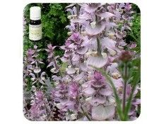 Aceite esencial Salvia Romana NAT Pranarom