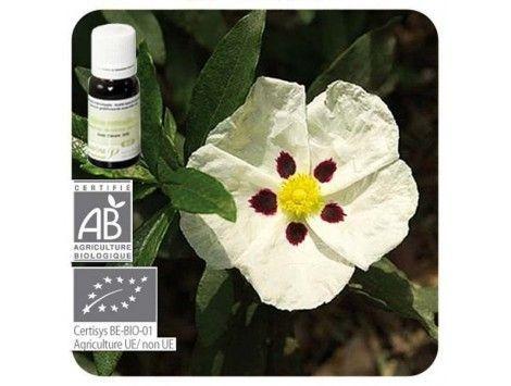 Aceite esencial Jara cv Córcega BIO Pranarom