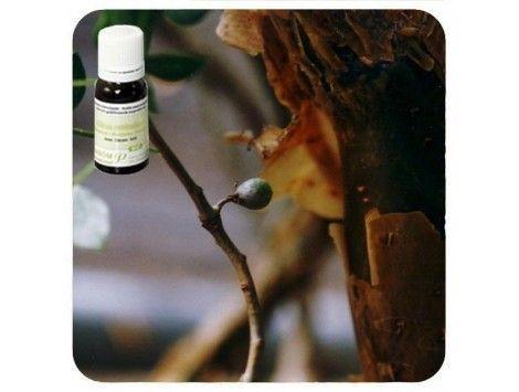 Aceite esencial Mirra NAT Pranarom
