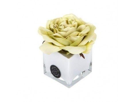 Difusor de aromas Rosa Verde en Cubo Blanco Herve Gambs