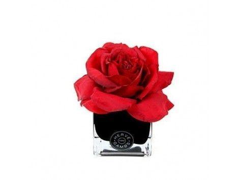Difusor de aromas Rosa Roja en Cubo Negro Herve Gambs