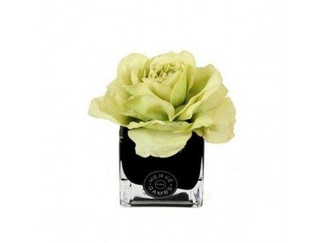 Difusor de aromas Rosa Verde en Cubo Negro Herve Gambs