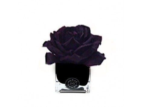 Difusor de aromas Rosa Ciruela en Cubo Negro Herve Gambs