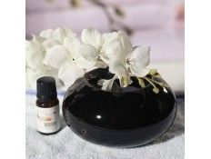 Difusor por calor suave de aceites esenciales Cosy Negro